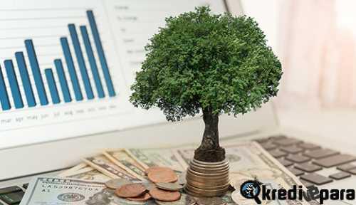 Yatırım Nedir? Nasıl Yapılır? Yatırımcı Kime Denir?