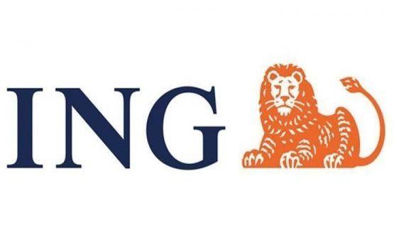 İNG Bank 0.94 Kredi